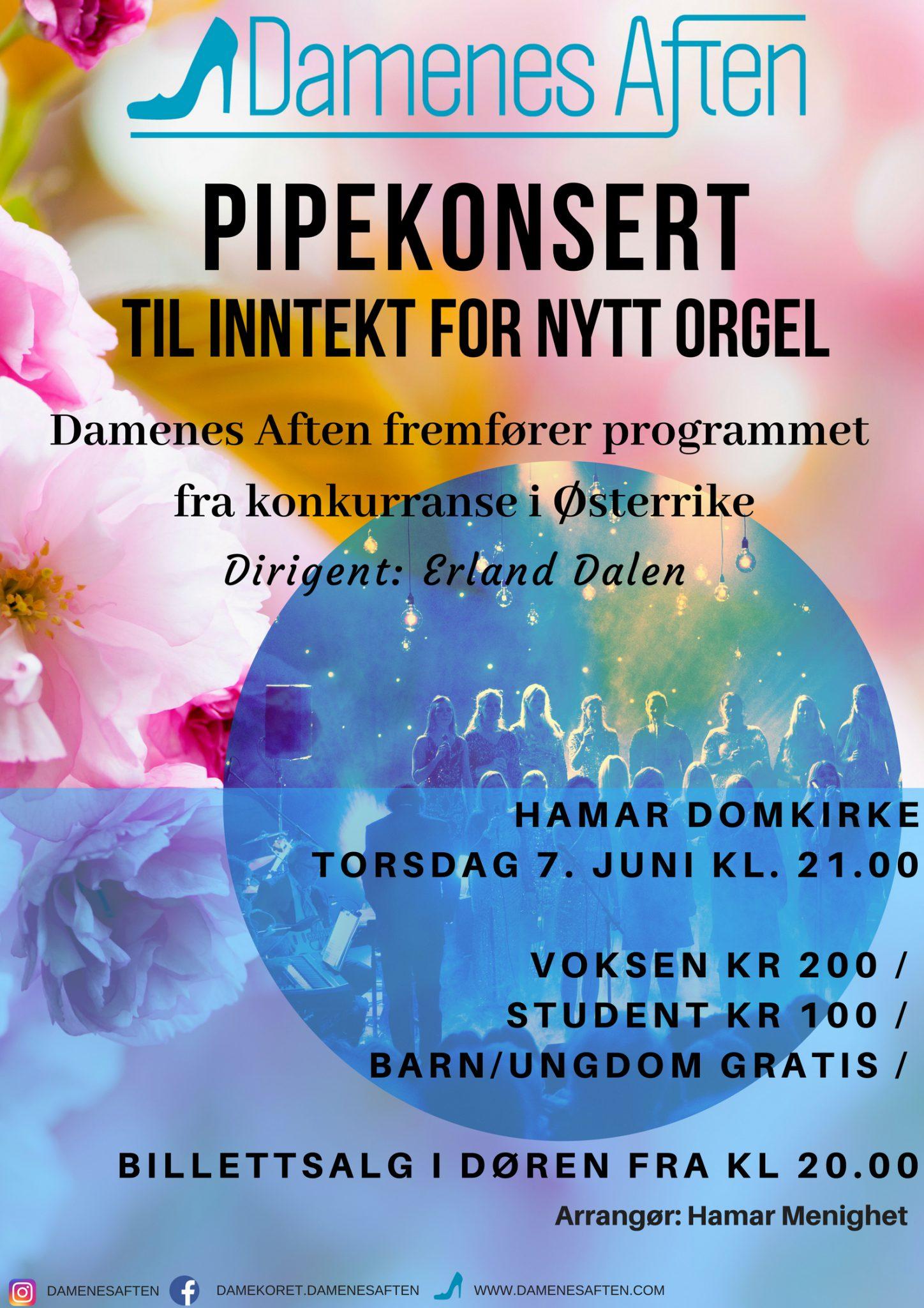 Pipekonsert - til inntekt for nytt orgel! 12